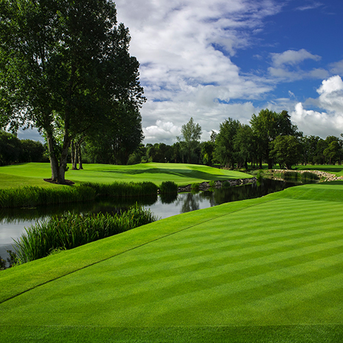 Adare Manor Golf P54